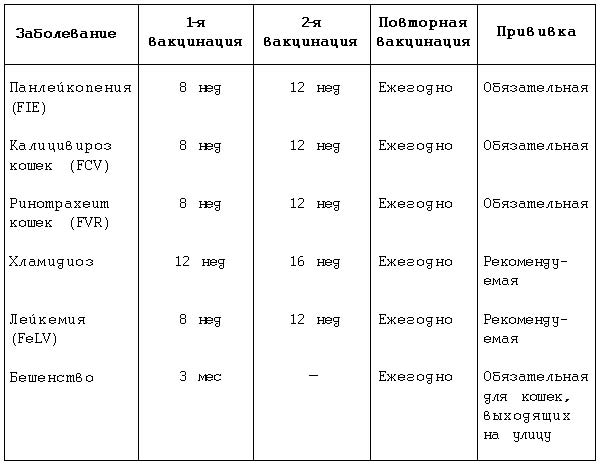Примерный словарь ребенка 4-5 лет - c3e59